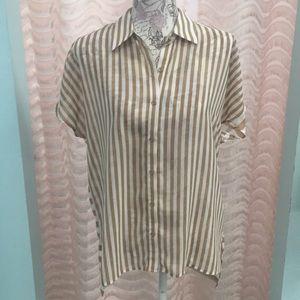Pleione Tan/White striped Sheer Button Up Blouse